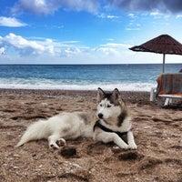 Photo taken at Bedya Beach by Sinem K. on 10/17/2013