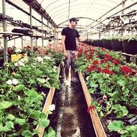 Photo taken at Wickman's Garden Village by Morgan Day on 5/23/2013