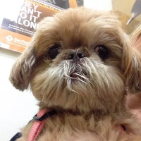 Photo taken at Banfield Pet Hospital by Susan K. on 11/24/2014