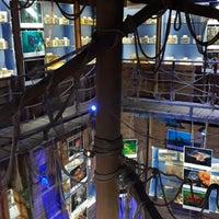 1/30/2018 tarihinde Nuarn K.ziyaretçi tarafından Deniz Biyolojisi Müzesi'de çekilen fotoğraf