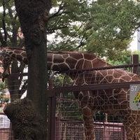 Photo taken at Giraffe by Kentaro T. on 10/1/2016
