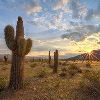 Foto tomada en Parque Nacional Los Cardones por Joel S. el 3/10/2014