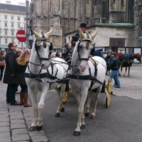 Photo taken at Vienna by Dimitri R. on 11/2/2013