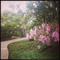Photo taken at Japanese Friendship Garden by Alan B. on 4/16/2013