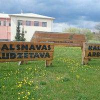 Photo taken at Kalsnavas Kokaudzētava LVM by Linda O. on 5/10/2014