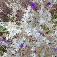 Das Foto wurde bei Springs Preserve von Stacey Z. am 10/5/2012 aufgenommen