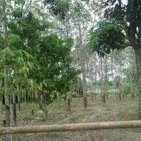 Photo taken at Kampung Gali Lurus by Quraisyah S. on 3/5/2014