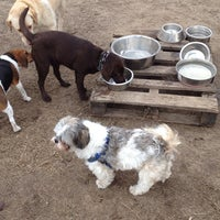Photo taken at Rice Creek Dog Park by Leslie S. on 4/19/2014