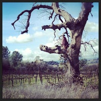 Photo taken at Twisted Oak Winery by Dhyana on 2/23/2013