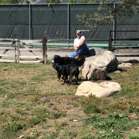 รูปภาพถ่ายที่ Carter Dog Park โดย Noah W. เมื่อ 9/3/2017