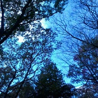 Photo taken at Lincoln Woods State Park by Tamara V. on 10/27/2013