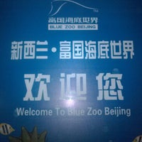 Photo taken at Blue Zoo Beijing by Beijing M. on 12/6/2013