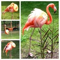 Photo taken at Milwaukee County Zoo by Melinda on 7/3/2012