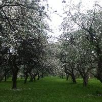 Снимок сделан в Яблоневый сад пользователем Julia M. 5/13/2012