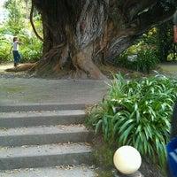 Foto tirada no(a) Parque Terra Nostra por Sebastian B. em 5/28/2012