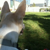Photo taken at LAPD Lawn Dog Park by Mario R. on 6/17/2012