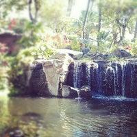 Photo taken at The Westin Maui Resort & Spa, Ka'anapali by Amanda H. on 7/3/2012