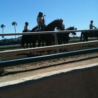Photo taken at Turf Paradise by Philly P. on 3/31/2012