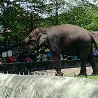 Photo taken at Kebun Binatang Gembira Loka by Hermawanto K. on 2/26/2012