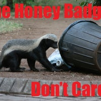 Photo taken at Honey Badger Headquarters by Yvette S. on 3/31/2012