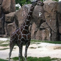 Photo taken at Philadelphia Zoo by artichoke8 -. on 8/5/2012