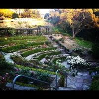 The Berkeley Rose Garden 377 Pos 173 S Botanical