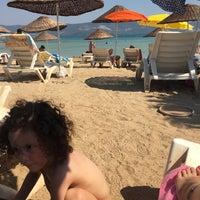 8/12/2017にDuygu Ö.がADÜ Plajiで撮った写真