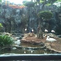 Photo taken at Maharani Zoo & Goa Lamongan by M. Syaiful Arif on 1/1/2015