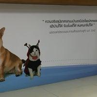 Photo taken at Suwanchard Pet Hospital by Kaew_kikkok on 11/13/2016