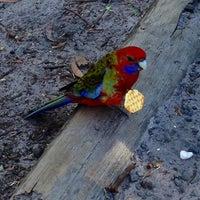 4/26/2013에 Lyn B.님이 Booderee National Park에서 찍은 사진