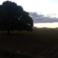 Photo taken at Aguilares by Gerardo Z. on 1/27/2014