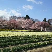 Photo taken at 実相寺 by 韓隅 錦. on 4/2/2016
