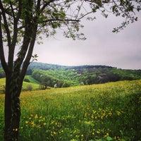 4/14/2013 tarihinde Aykut B.ziyaretçi tarafından Karcma Kriha Polonezkoy'de çekilen fotoğraf