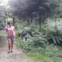 6/26/2017 tarihinde Meral A.ziyaretçi tarafından Şelale Park'de çekilen fotoğraf