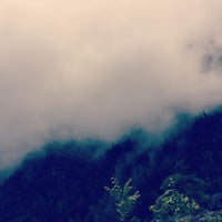 Photo taken at Lago di Tovel by LaCasiCris on 7/13/2016