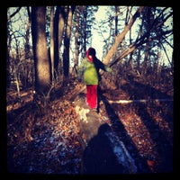 Photo taken at Minnehaha Park by Janis B. on 11/26/2012