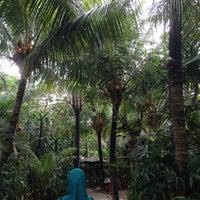 Photo taken at Taman Santap Rumah Kayu by A'aisyah Mardhiyyah on 11/29/2015