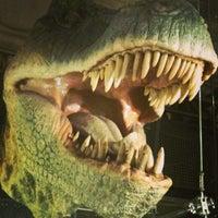 Das Foto wurde bei Natural History Museum von Flavia D. am 5/7/2013 aufgenommen