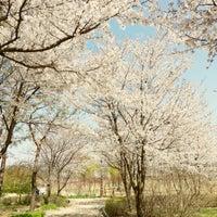 Photo taken at Hanbat Arboretum by Paris R. on 4/14/2013