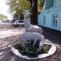 Photo taken at Два оленя by Katerina♔♥♚ B. on 4/26/2014