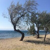 Photo taken at Sarıkız Sahil Plajı by Özcan İ. on 7/18/2015