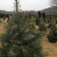 Photo taken at Oak Ridge Tree Farm by Kimberly M. on 12/1/2012