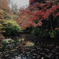 11/23/2016にTadayoshi N.が武蔵陵墓地 (多摩御陵)で撮った写真