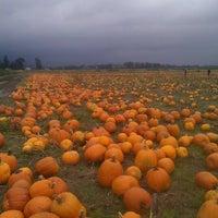 Photo taken at Bella Organic by Heather M. on 10/19/2012