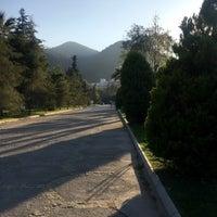 Photo taken at Balçova Termal Yürüyüş Yolu by Aysun A. on 3/24/2017