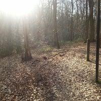 Photo taken at Bois de Tihange by Henri L. on 3/29/2014