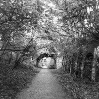 Das Foto wurde bei Parkland Walk (Finsbury Park to Crouch End Section) von Jenn C. am 11/11/2013 aufgenommen