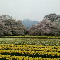 Photo taken at 実相寺 by Koya S. on 4/10/2016