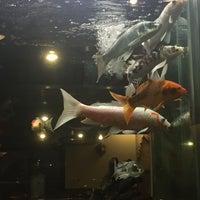 Das Foto wurde bei Mikado Japanese Steakhouse von Ferna G. am 7/30/2016 aufgenommen