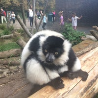 Photo taken at Lemurs Cage by Melissa S. on 9/12/2015